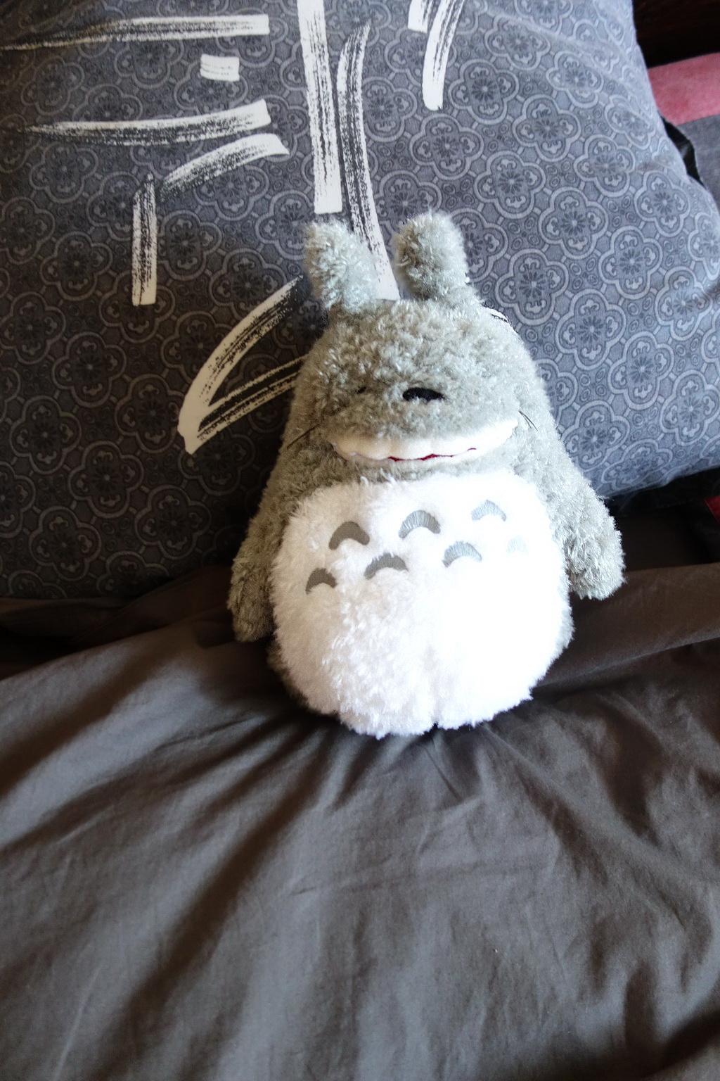 My-Neighbor-Totoro-snooze3