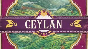 Notre avis sur Ceylan
