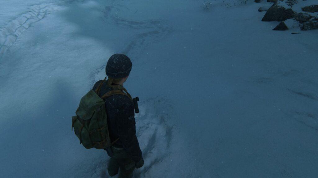 Trace de pas de Ellie dans la neige