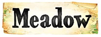 Test de Meadow - Paradoxe Temporel